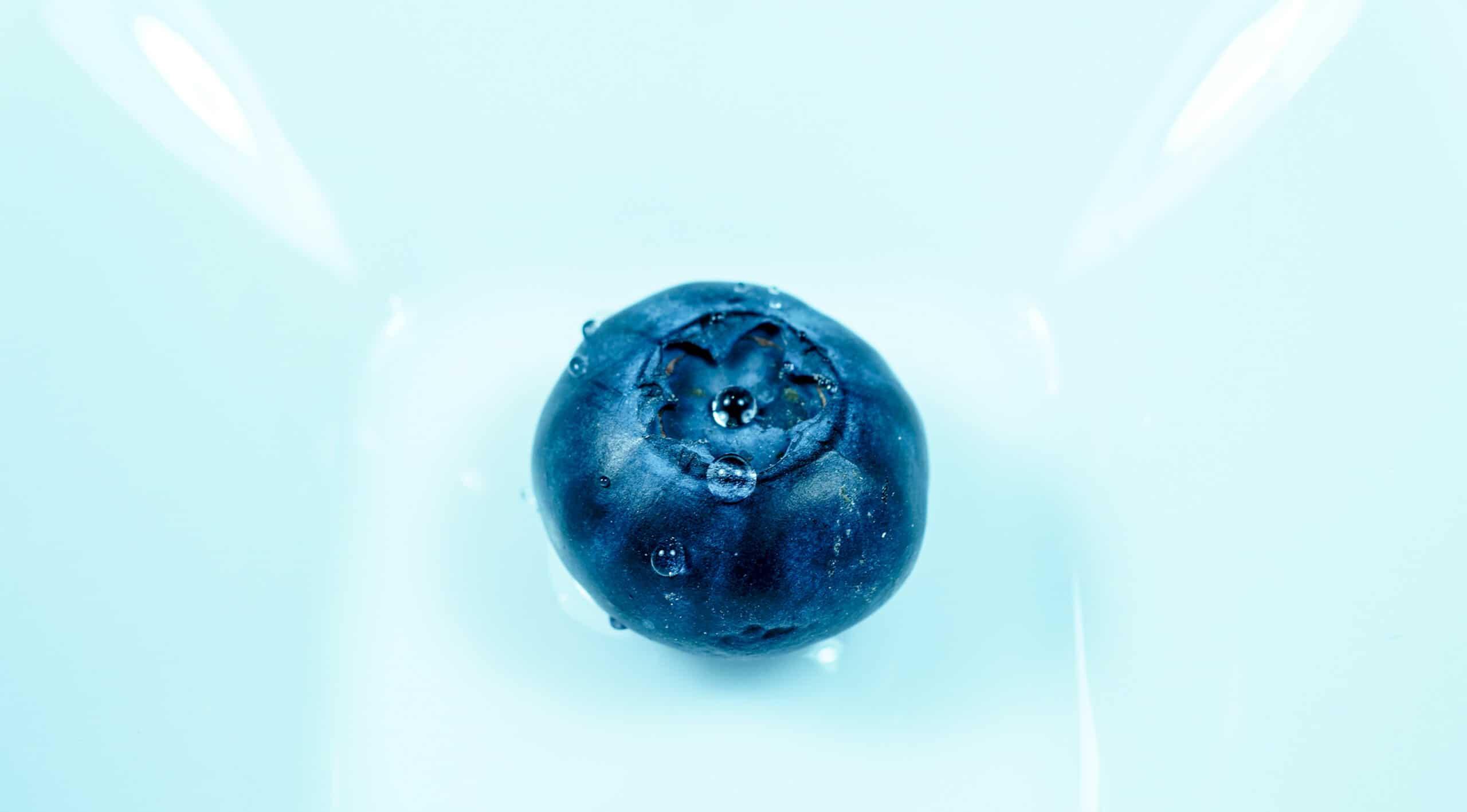 Blaubeeren Picher